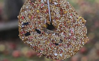 bagels to birdfeeders how to repurpose stale bagels, outdoor living, repurposing upcycling
