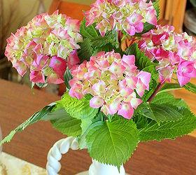how to trim hydrangeas flowers gardening hydrangea hydrangeas laura garcia - When To Trim Hydrangea
