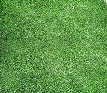 dog artificial grass, landscape, Close up new fake grass