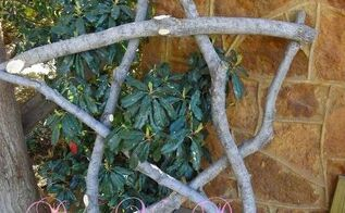 gigantic star made from branches in my yard, gardening, My 5 rustic star