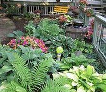 shade garden addition, gardening, My shade garden addition
