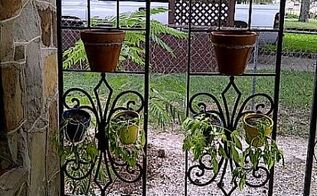 gazebo frame re purposed into garden trellises, gardening, 2 Trellises hanging from the West side of front porch pots wired to the trellis and planted with a mix of Morning Glorys and various vines