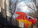 id needed re characters in entertainment, seasonal holiday d cor, thanksgiving decorations, An unidentified fish marches swims out of water in Macy s 2013 Thanksgiving Parade View One at CPW