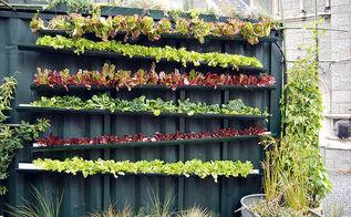 gutter gardens amp mason jar lanterns, crafts, gardening, mason jars, outdoor living, repurposing upcycling, Hanging Gutter Garden
