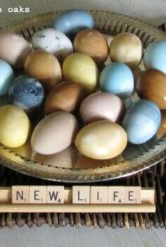 naturally dyed easter eggs, crafts, easter decorations, seasonal holiday decor, Naturally Dyed Easter Eggs always turn out gorgeous colors