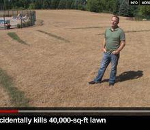 man kills 40 000 sq ft lawn, gardening, landscape, guy in lawn