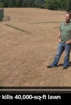 man kills 40 000 sq ft lawn, gardening, landscape, guy in lawn
