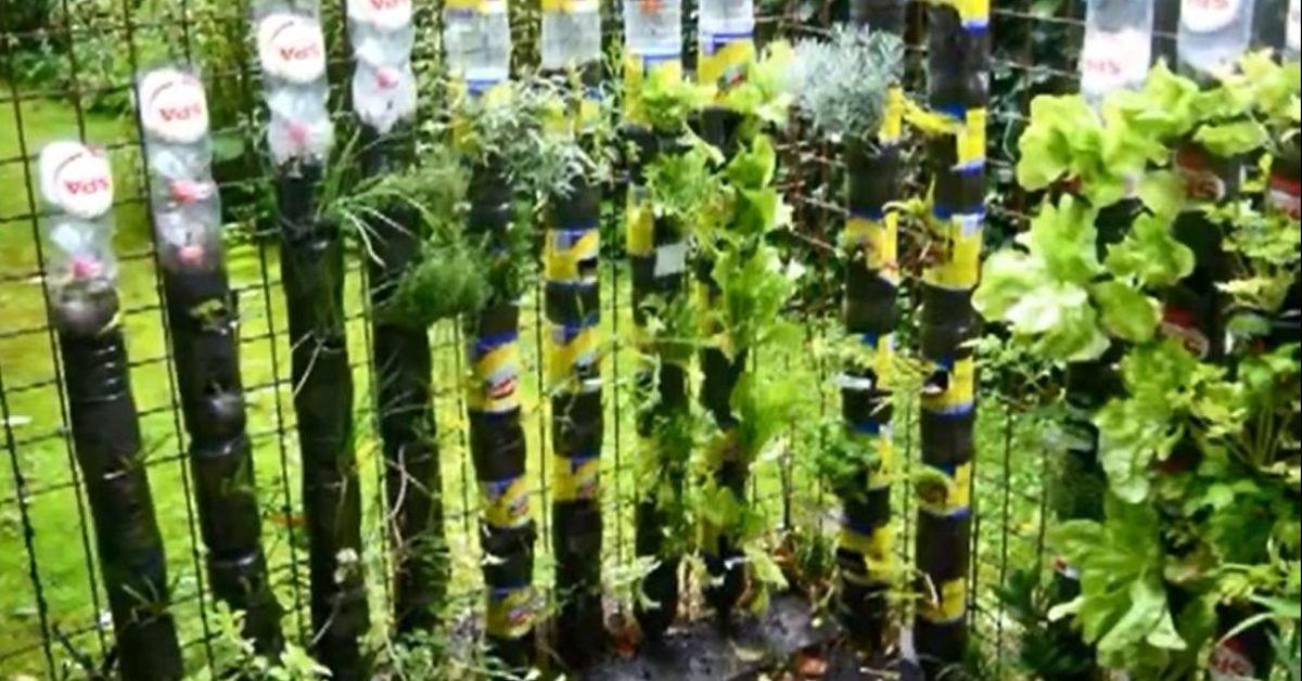Planter Box Ideas Diy Herbs Garden