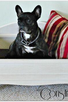 diy dog bed, painted furniture, repurposing upcycling