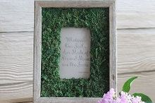 diy moss frame, crafts, DIY Moss Frame