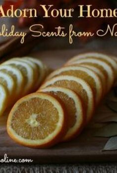 use items from your pantry to give your home the scents of the season, cleaning tips, Scents of the Season from Nature