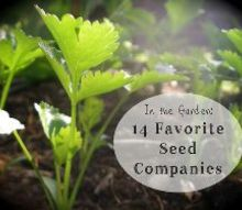 in the garden 14 favorite seed companies, gardening