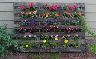 pallet flower garden, flowers, gardening, pallet, repurposing upcycling
