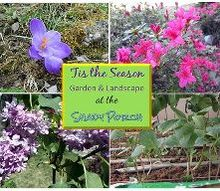 tis the season to garden and landscape, gardening, landscape
