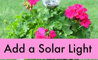 geranium plant with solar light for mother s day, gardening