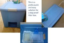 easy and quick solution for dog proof litter box, cleaning tips, pets animals, repurposing upcycling