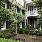 what flowering vines are best for your zone, gardening, landscape, outdoor living, Confederate Jasmine via Dargan Landscape Architects
