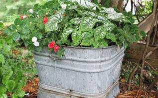 container gardening ideas, container gardening, gardening, repurposing upcycling