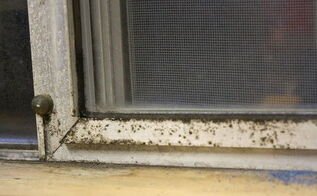 aluminum window frames cleaning restoring, cleaning tips, windows