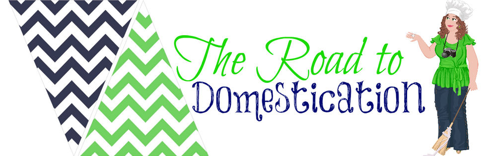 Kristen From The Road To Domestication cover photo