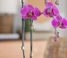 diy gold orchid clips, flowers, home decor