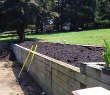 q deer resistant garden, flowers, gardening, perennial, Full sun