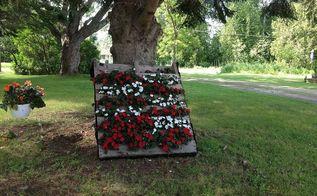 pallet garden flowers, flowers, gardening, pallet