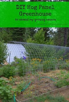 greenhouse hog panels how to, diy, gardening