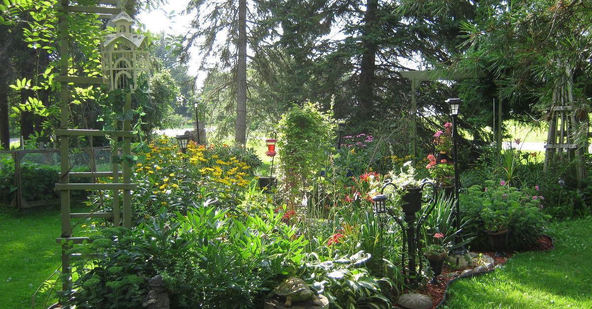 Some views around my gardens zone 5 ontario canada for Gardening zones ontario