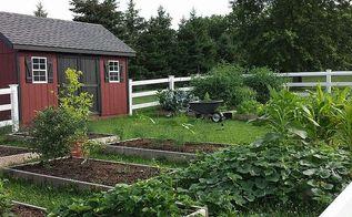 gardening farm vegetable, gardening