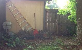 gardening ideas backyard shade inspiration, gardening