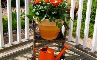 gardening planters annual containers, container gardening, gardening, Neon orange Dahlias