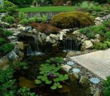pond stars national geographic new show cast, gardening, landscape, outdoor living, ponds water features, Backyard Water Garden