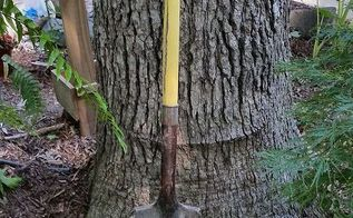 shovels my must have garden tools, gardening, tools