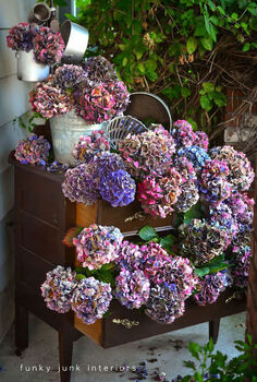 hydrangea grow prune dry decorate, flowers, gardening, home decor, hydrangea