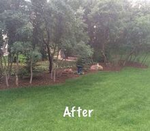 backyard clean up, landscape, AHHH