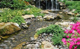 landscaping reservoir aquascape rainxchange, landscape, outdoor living, ponds water features, Backyard Wildlife Habitat