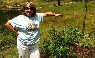 gardening amateur farming vt boston ct, gardening