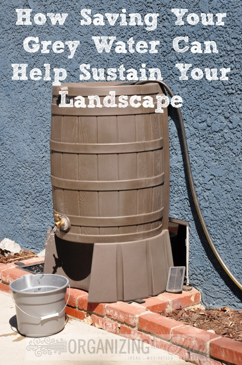 Using Grey Water To Sustain Your Landscape