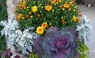 fall flower arrangement, flowers, gardening