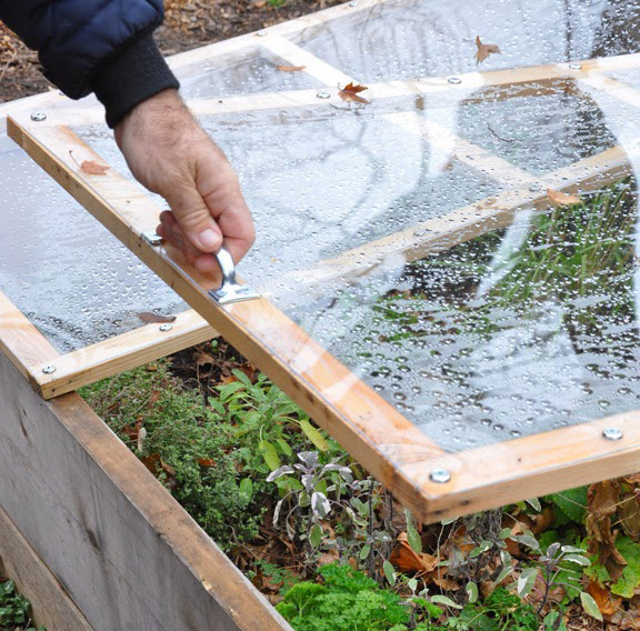 from raised bed to cold frame in minutes hometalk