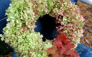 diy free fall wreath using hydrangeas, crafts, flowers, seasonal holiday decor, wreaths, Use Limelight Hydrangeas in a Fall wreath