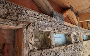 how to fix up termite tracked dinning room, home maintenance repairs, pest control