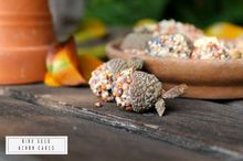 how to make an acorn cap birdseed cakes, crafts, outdoor living, pets animals