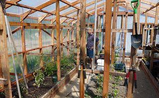 garden greenhouse indoor design layout ideas, gardening, home decor, outdoor living, Watering in greenhouse