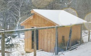 take a peek in this diy chicken coop, cleaning tips, diy, doors, gardening, homesteading
