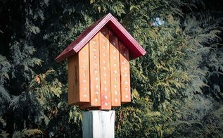 mason bee house, flowers, gardening