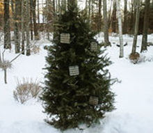 recycled christmas tree bird feeder, outdoor living