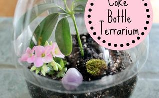 coke bottle terrarium, gardening, home decor, repurposing upcycling, terrarium
