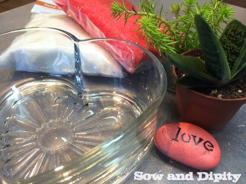 succulent dish garden for valentines day flowers gardening seasonal holiday decor succulents